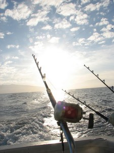 fishing reel off the boat at sunset